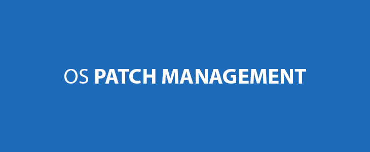 Learn How To Use OS Patch Management Software