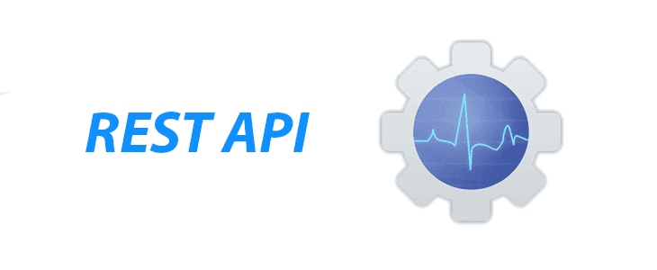 Pulseway introduces RESTful API